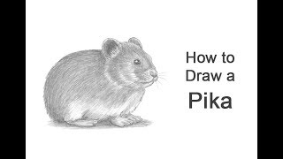 How to Draw a Pika