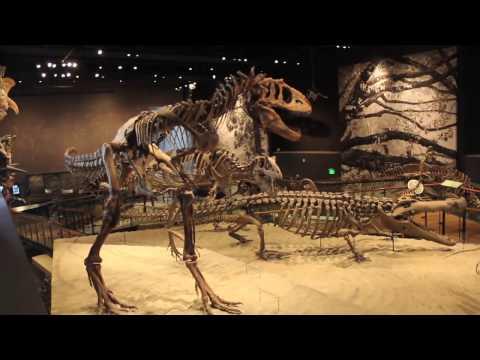 Natural History Museum Salt Lake City Utah