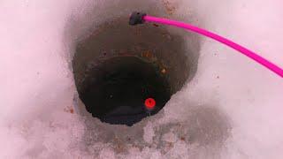 Опустил поплавок в лунку и сразу поклёвка Зимняя рыбалка 2021