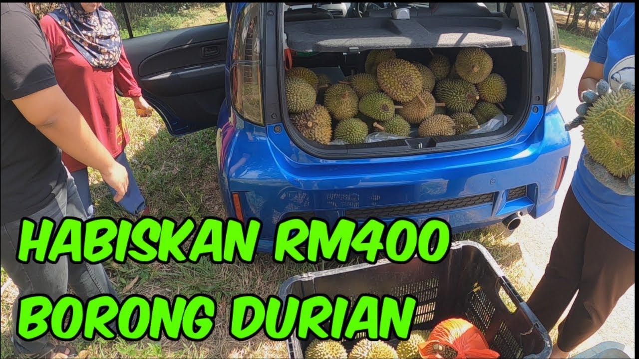 GILA !! HABISKAN RM 400 BORONG DURIAN