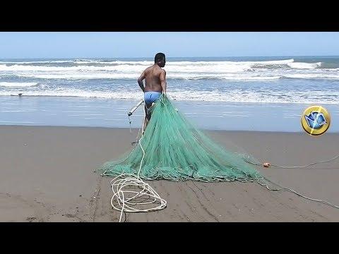 Fishing with trawl net