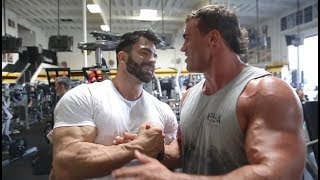 SERGI CONSTANCE OLYMPIA PLANS | ARM WORKOUT