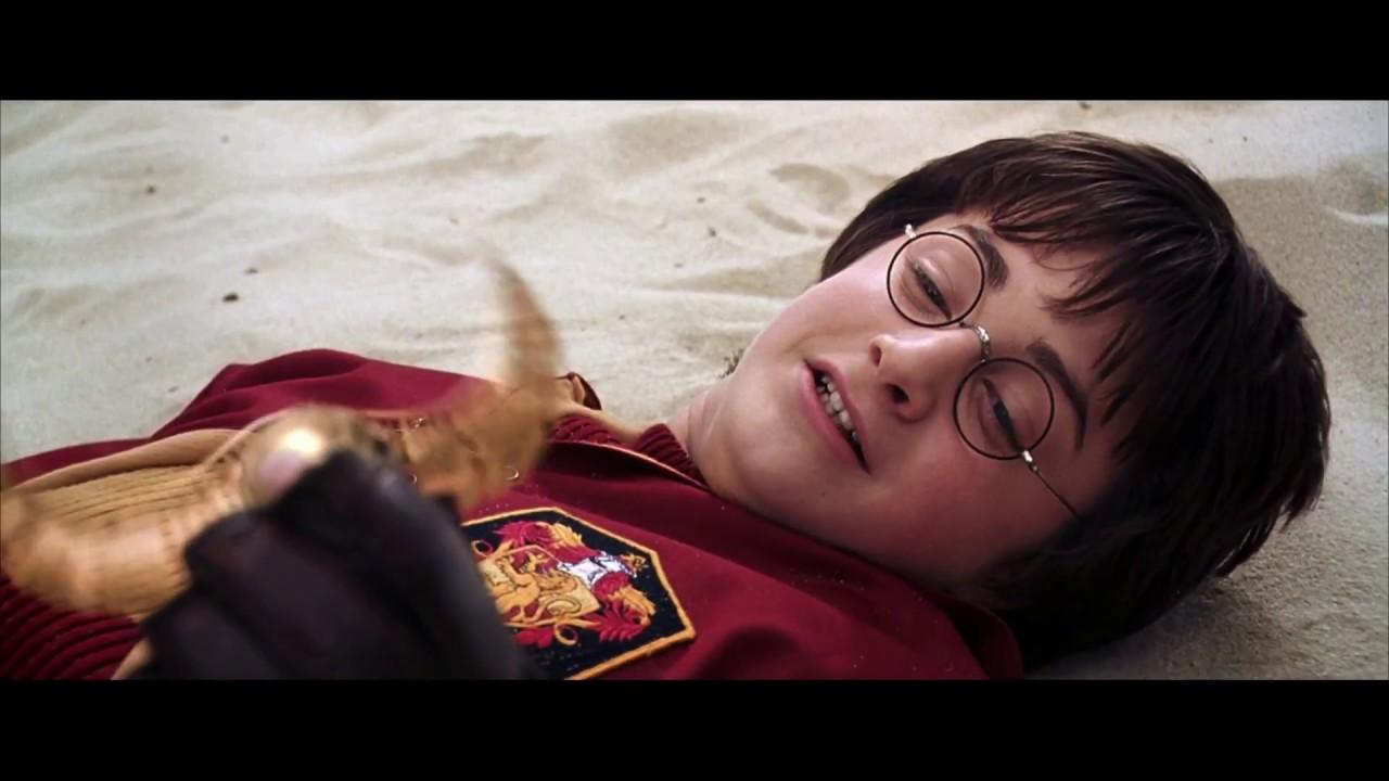 Гарри Поттер и Драко Малфой ловят золотой снитч | Гарри ...
