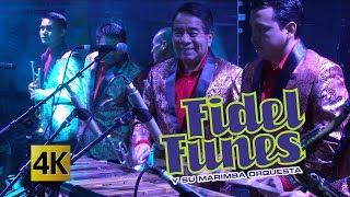 Fidel Funes y su Marimba Orquesta - Ilusiones 4K