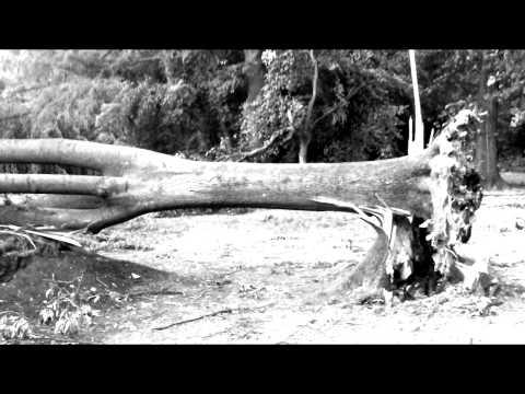 Richie Palace - Alles im Eimer (Video-Clip)