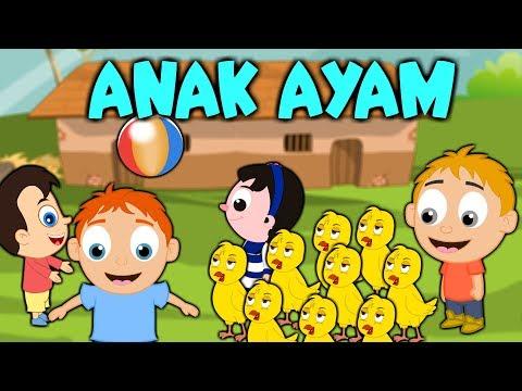 10 chicks - ANAK AYAM - TEK KOTEK | Malay Nursery Rhymes | Malay/Melayu Kids Songs Compilation