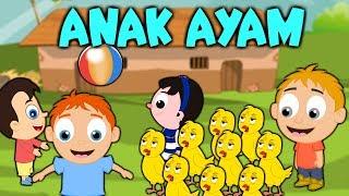 Lagu Kanak Kanak Melayu Malaysia - ANAK AYAM - TEK KOTEK