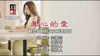 向蕙玲vs陳隨意-真心的愛【KTV導唱字幕】1080p