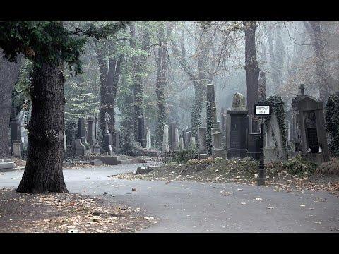 Народные приметы про кладбище
