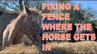 Fixing a Fence Where the Horse Gets In - VLOGs