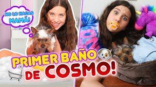 TRUCOS PARA BAÑAR A TU CACHORRO! ¡El Primer Baño de COSMO! | Leyla Star 💫