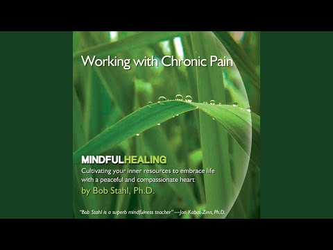 Guided Meditation for Chronic Pain