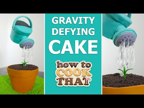 GRAVITY DEFYING WATERING CAN CAKE How To Cook That Ann Reardon #spon