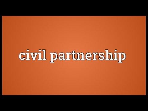 Civil partnership Meaning