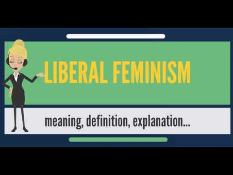 What is LIBERAL FEMINISM? What does LIBERAL FEMINISM mean? LIBERAL FEMINISM meaning & explanation