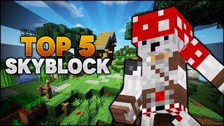 MK ĐẠT TOP 5 SERVER SKYBLOCK HECTING MINECRAFT IP : LUCKYVN.COM - MK Gaming