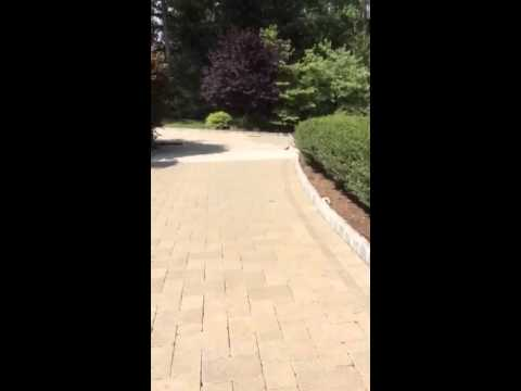 how to install polymeric sandsuper thin pavers - youtube