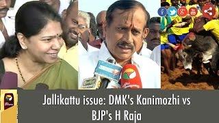 Jallikattu issue: DMK's Kanimozhi vs BJP's H Raja