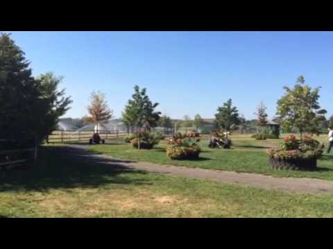 Harbes Farm Carting