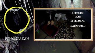 Ada penampakan... saat berburu ikan di selokan Brunei dapat 30kg #catchfish #spearfishing #nombak