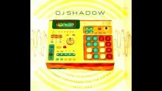 DJ Shadow-Intensely Hitting