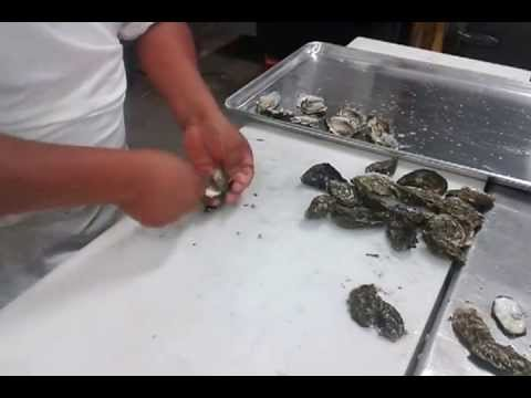 How to shuck an oyster giovanni 39 s fish market youtube for Giovanni s fish market