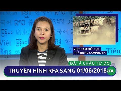 Tin tức thời sự : Việt Nam tiếp tục phá rừng Campuchia