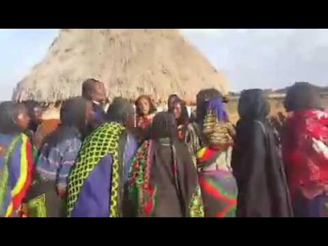 Borana traditional dance - Sirbaa loonni
