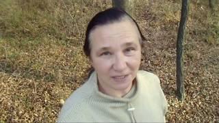 Хроника 2018 г. Часть 8. Осень, гости, листопад... Но поедет ли Золушка на бал?
