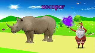 учить животных для малышей - животные для детей - видео развивающее #30