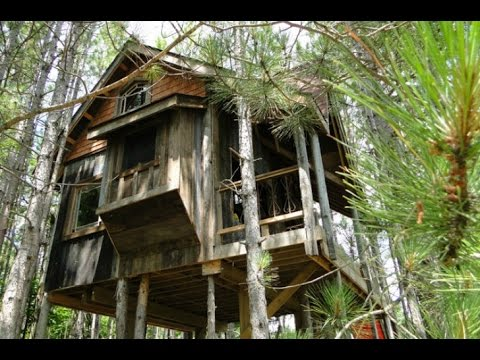 Lynne Knowlton's Treehouse is a Sanctuary Made from Reclaimed Materials in Canada