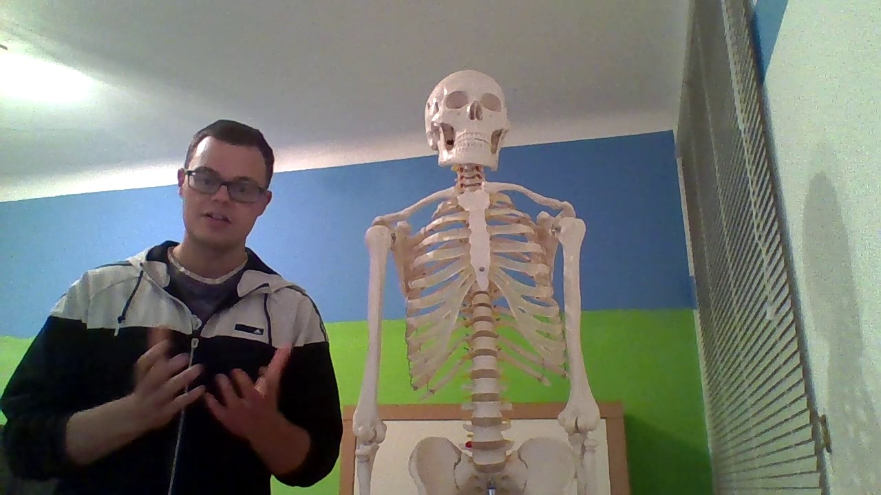 01- Musculus pectoralis minor Anatomie, Funktion und Klinik - YouTube