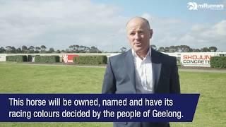 miRunners CEO Steve Brown talks Geelong Community Thoroughbred Partnership
