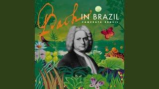 Double Violin Concerto in D Minor, I. Vivace