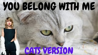 Cats Sing You Belong With Me by Taylor Swift | Cats Singing Song Parody