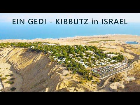 EIN GEDI Is A KIBBUTZ On The Western Shore Of The DEAD SEA In Israel