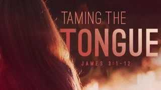 Taming The Tongue - Matthew Vander Els