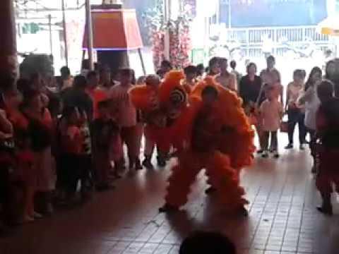 Singapore Teng Wei Dragon and Lion dance Troupe Cai Qing Performances at Sheng Hong Temple 2015