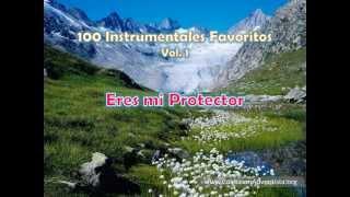 100 Instrumentales Favoritos vol. 1 - 004 Eres mi Protector