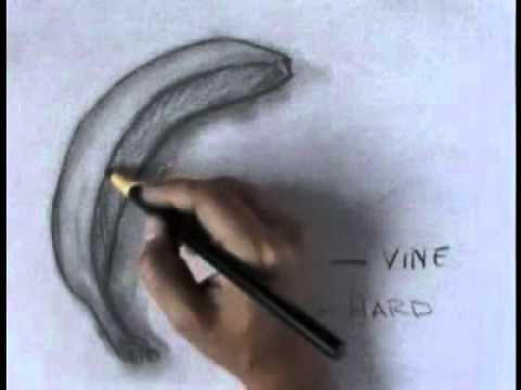 charcoal-drawings---learn-to-draw-with-charcoal