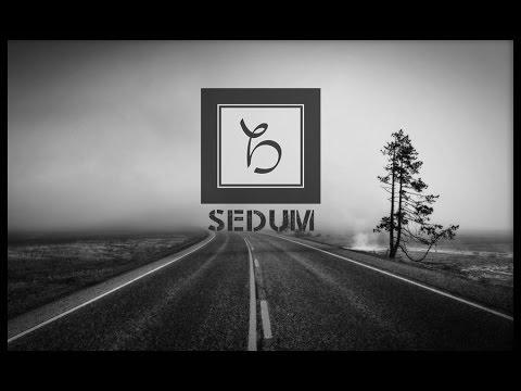 Balkanscream - SEDUM [Official Audio Live]