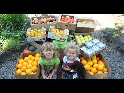 Came across this video of a parent and his vegan 6 and 3 year old and thought what an awful thing to do to a child but was completely blown away by how much they actually like the fruits and veggies