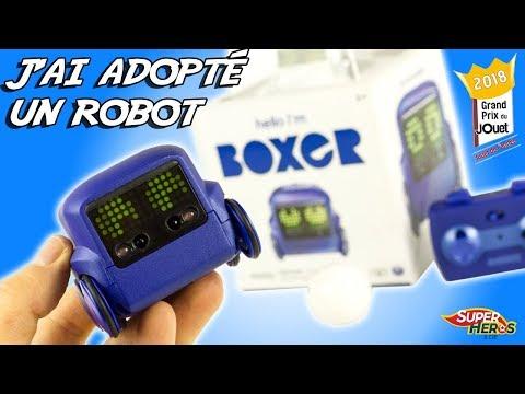 J'ai Adopté Un Robot Boxer Jouet De L'Année 2018 Spin Master Toy Kids Review Noel