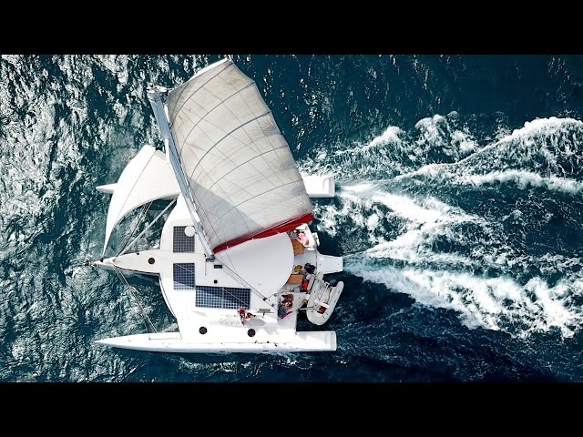 This is why we LOVE sailing trimaran! Never boring!