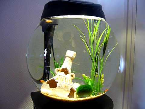 Aquarium boule 50l youtube for Filtre aquarium rond