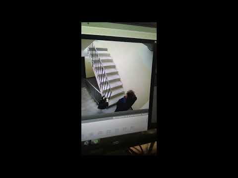 Волжане по видео определили, кто справляет малую нужду в подъезде