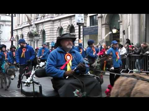 New Year Day Parade 2015  London  (part 1)_