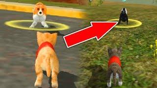 СИМУЛЯТОР Маленького КОТЕНКА #4 игра про котиков как мультик веселое видео для детей
