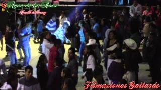 FIESTA SANTA ROSA DE LIMA 2015 - AGUA DE LA ROSA HUAUTLA DE JIMENEZ - En Vivo®