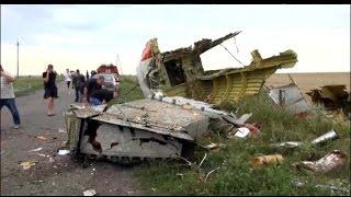 Local Ukrainians Suspect Russian Hardware Responsible For Shooting Down Malaysian Jetliner